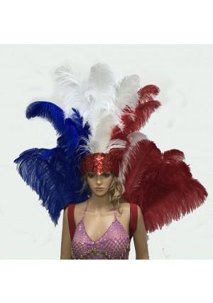 USA flag Charming Open Face Ostrich Feather Headdress Backpiece Set Burlesque dance
