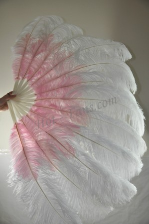 "Custom color & placement options  2 layers Ostrich Feather Fan  30""x 54"""