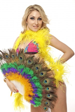 mix colors y-p-g Double faced Peacock Eye Marabou Feather Fan engraved plastic frame