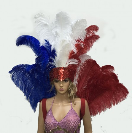 USA flag Charming Open Face Ostrich Feather Headdress Backpiece Set Burlesque dance
