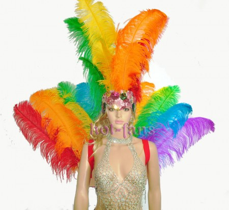Rainbow Ostrich Feather Open Face Headdress & backpiece Set