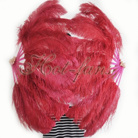 """A pair burgundy Single layer Ostrich Feather fan 24""""x 41"""" with leather travel Bag"""