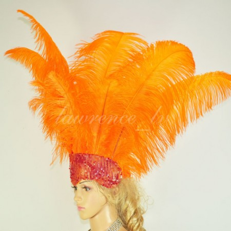orange Sharp Angle Ostrich Feathers Open Face  Headgear Headdress
