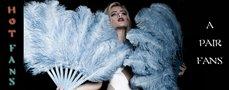Ostrich Feathers Fan